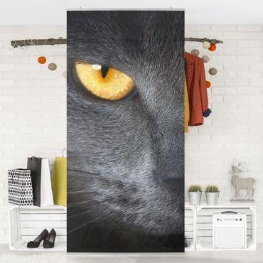 Raumteiler - Cats Gaze 250x120cm