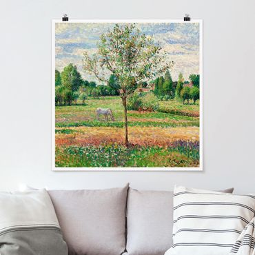 Poster - Camille Pissarro - Wiese mit Schimmel - Quadrat 1:1