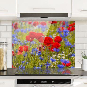 Spritzschutz Glas - Sommerwiese mit Mohn und Kornblumen - Querformat 3:4