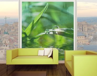 Fensterfolie - XXL Fensterbild Green Ambiance II - Fenster Sichtschutz