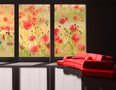Fensterfolie - XXL Fensterbild Summer Poppies - Fenster Sichtschutz
