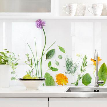Küchenrückwand - Kräuter und Blüten