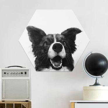 Hexagon Bild Forex - Illustration Hund Border Collie Schwarz Weiß Malerei