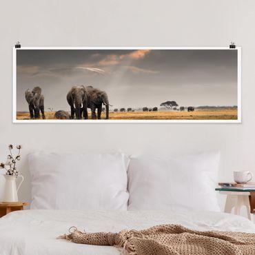 Poster - Elefanten der Savanne - Panorama Querformat