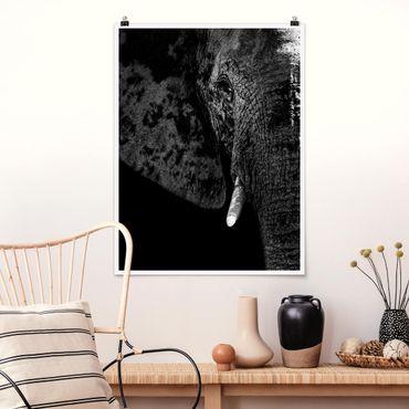 Poster - Afrikanischer Elefant schwarz-weiß - Hochformat 3:4