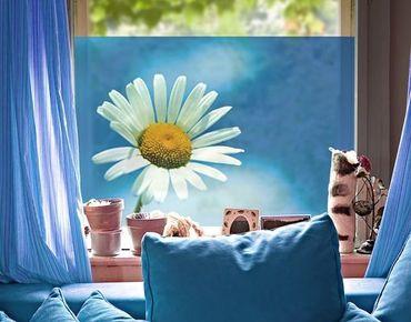 Fensterfolie - Sichtschutz Fenster Ladysun - Fensterbilder