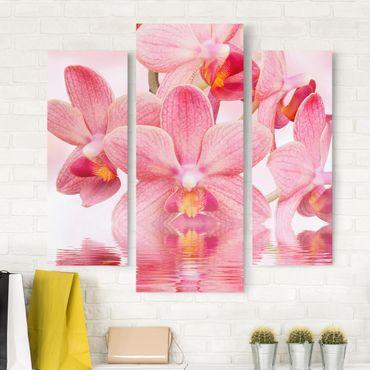 Leinwandbild 3-teilig - Rosa Orchideen auf Wasser - Galerie Triptychon