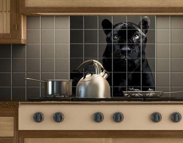 Fliesenbild - Black Puma