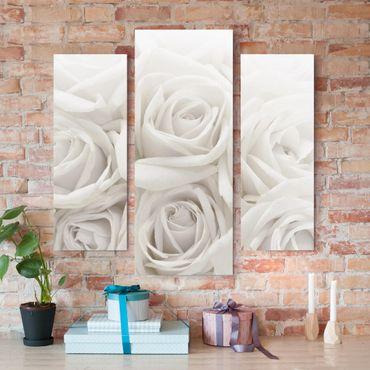Leinwandbild 3-teilig - Weiße Rosen - Galerie Triptychon