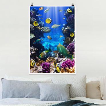 Poster - Underwater Dreams - Hochformat 3:2