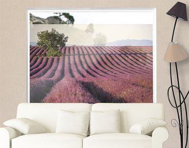 Fensterfolie - Sichtschutz Fenster Lavender - Fensterbilder