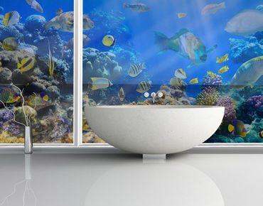 Fensterfolie - XXL Fensterbild Underwater Reef - Fenster Sichtschutz