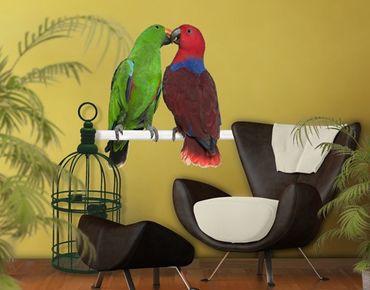 Wandtattoo Vögel No.645 Verliebte Papageien