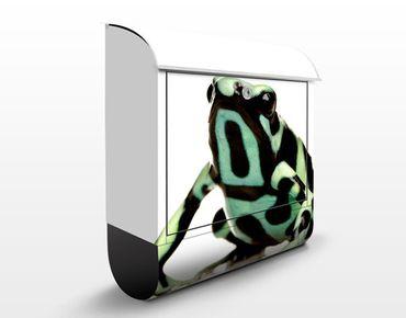 Briefkasten mit Zeitungsfach - Zebra Frog - Briefkasten mit Tiermotiv