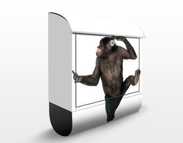 Briefkasten mit Zeitungsfach - Alberner Affe - Briefkasten mit Tiermotiv
