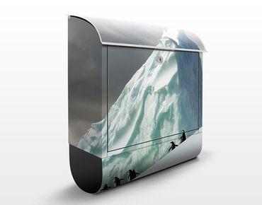 Briefkasten mit Zeitungsfach - Arctic Penguins - Hausbriefkasten