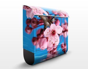 Briefkasten mit Zeitungsfach - Kirschblüte - Blumen Rosa, Pink