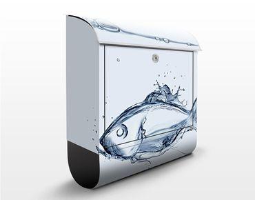 Briefkasten mit Zeitungsfach - Liquid Silver Fish - Briefkasten mit Tiermotiv