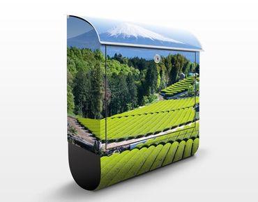 Briefkasten mit Zeitungsfach - Teefelder vor dem Fuji - Hausbriefkasten