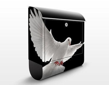 Briefkasten mit Zeitungsfach - Friedenstaube - Briefkasten mit Tiermotiv