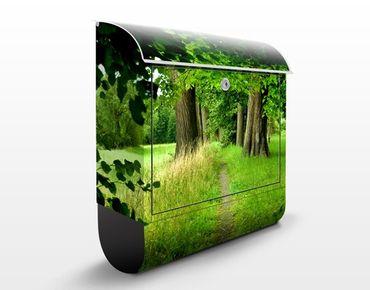Briefkasten mit Zeitungsfach - Verborgene Lichtung - Hausbriefkasten Grün