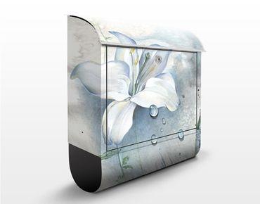 Briefkasten mit Zeitungsfach - Tränen einer Lilie - Briefkasten Blumen
