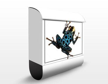 Briefkasten mit Zeitungsfach - Poison Dart Frog - Briefkasten mit Tiermotiv