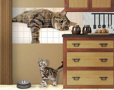 Fliesenbild - Cat Chill Out