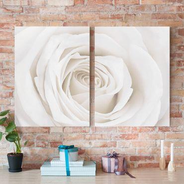Leinwandbild 2-teilig - Pretty White Rose - Hoch 3:4