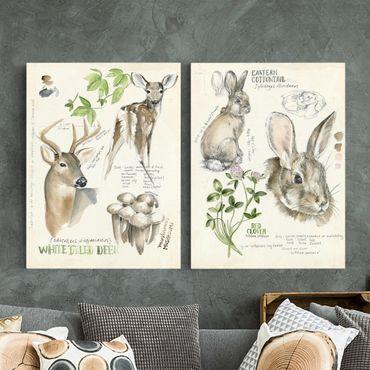 Leinwandbild 2-teilig - Wildnis Journal - Hirsch und Kaninchen Set II - Hoch 4:3