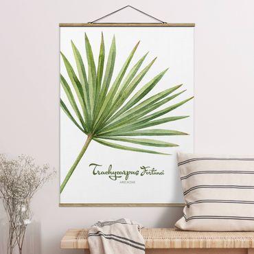 Stoffbild mit Posterleisten - Aquarell Botanik Trachycarpus fortunei - Hochformat 4:3