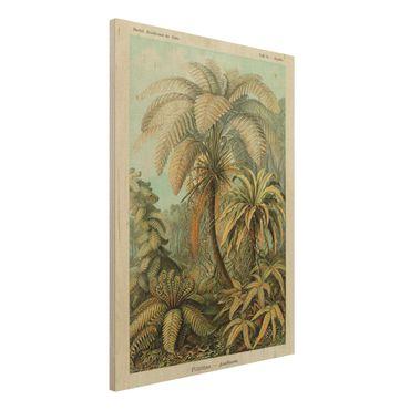Holzbild - Botanik Vintage Illustration Laubfarne - Hochformat 4:3