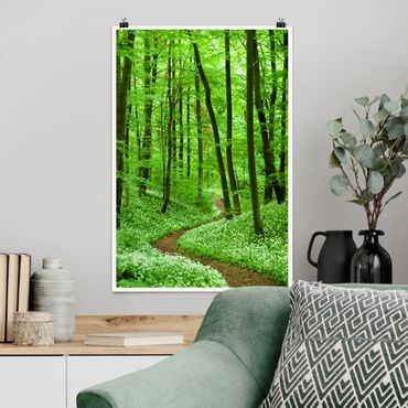 Poster - Romantischer Waldweg - Hochformat 3:2