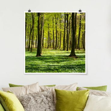 Poster - Waldwiese - Quadrat 1:1