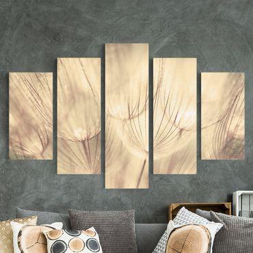 Leinwandbild 5-teilig - Pusteblumen Nahaufnahme in wohnlicher Sepia Tönung