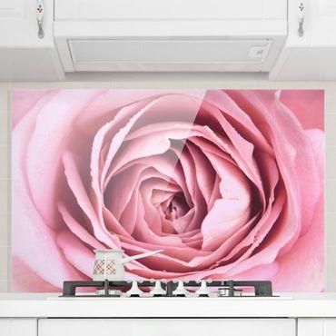 Spritzschutz Glas - Rosa Rosenblüte - Querformat 2:3