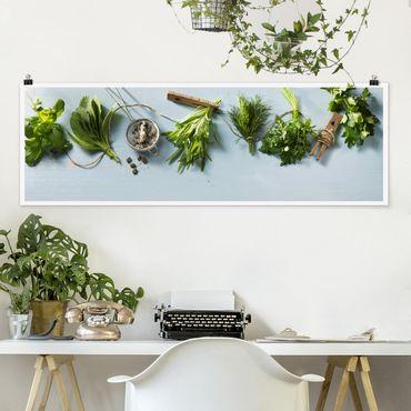 Poster - Gebündelte Kräuter - Panorama Querformat