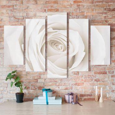 Leinwandbild 5-teilig - Pretty White Rose