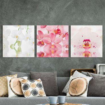 Leinwandbild 3-teilig - Orchideen auf Wasser - Quadrate 1:1