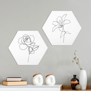 Hexagon Bild Alu-Dibond 2-teilig - Line Art Blüten Schwarz Weiß Set