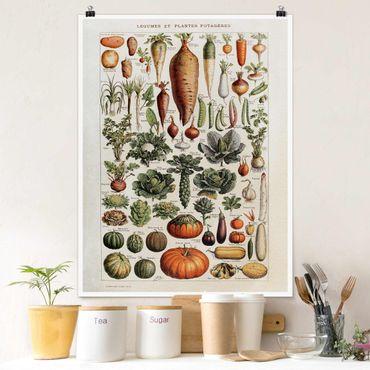 Poster - Vintage Lehrtafel Gemüse - Hochformat 4:3