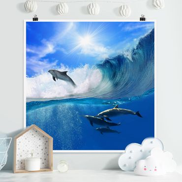 Poster - Playing Dolphins - Quadrat 1:1