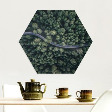 Hexagon Bild Alu-Dibond - Luftbild - Waldstraße von Oben