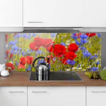 Spritzschutz Glas - Sommerwiese mit Mohn und Kornblumen - Panorama