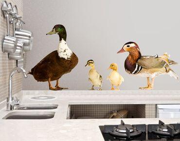 Wandtattoo Vögel No.722 The Duck Family