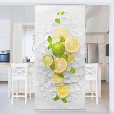 Raumteiler - Zitrusfrüchte auf Eiswürfel 250x120cm