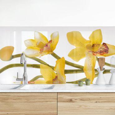 Küchenrückwand - Saffron Orchid Waters