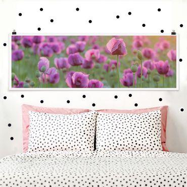 Poster - Violette Schlafmohn Blumenwiese im Frühling - Panorama Querformat