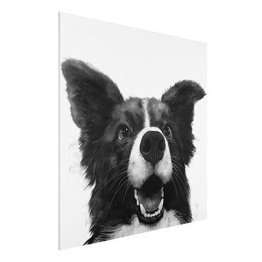Forex Fine Art Print - Illustration Hund Border Collie Schwarz Weiß Malerei - Quadrat 1:1