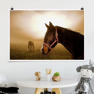 Poster - Early Horse - Querformat 2:3